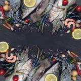 Mariscos crudos frescos de los mariscos de la mezcla con las hierbas y el limón de las especias en fondo oscuro imagen de archivo libre de regalías
