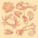 Mariscos del bosquejo Fotografía de archivo libre de regalías