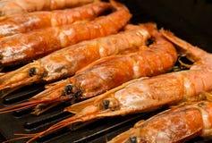 Mariscos del grupo de los Langoustines que cocinan en la cena deliciosa apetitosa del almuerzo de la parrilla imagen de archivo
