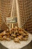 Mariscos dulces de la almeja en el hielo imágenes de archivo libres de regalías