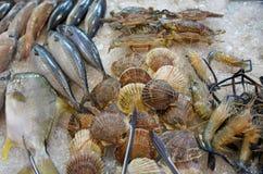 Mariscos en el hielo en el mercado de pescados Foto de archivo libre de regalías