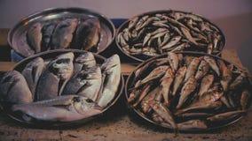 Mariscos en las condiciones antihigiénicas, moscas en pescados e intoxicación, escalfando almacen de metraje de vídeo