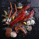 Mariscos frescos, ostra del camarón del cangrejo Fotografía de archivo