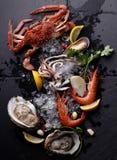Mariscos frescos, ostra del camarón del cangrejo en el fondo de piedra Foto de archivo libre de regalías