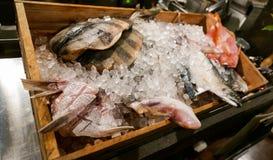 Mariscos japoneses en un cajón de hielo en un restaurante Fotos de archivo libres de regalías