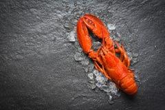 Mariscos rojos de la langosta con hielo en la opinión superior del backgroud oscuro foto de archivo