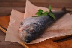 Mariscos salados enteros de los arenques de los pescados Imagenes de archivo