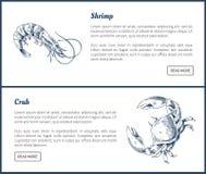 Mariscos y ejemplo crustáceo del vintage de los iconos stock de ilustración