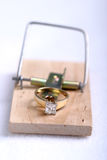 Marital Trap2. Engagement ring mouse trap royalty free stock photo