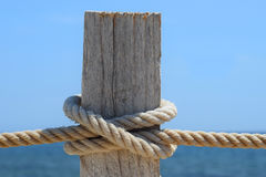 Maritieme knoop van de knoop en een stuk van hout Royalty-vrije Stock Afbeeldingen