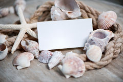 Maritime background with Blank Card and seashells Royalty Free Stock Image