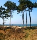 Maritime climate. The horizon of the Baltic Sea Stock Photos
