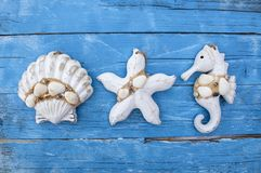 Maritime Decoration with shells, starfish, sailing ship, fishing net on blue drift wood royalty free stock photos