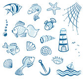 Maritime, fish, mussel Stock Photography