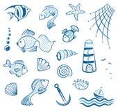 Maritime, poissons, moule Photographie stock