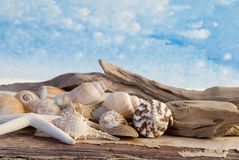Maritime Still Life Royalty Free Stock Photo