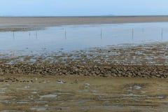 Maritimt landskap på lågvattenvatten royaltyfria foton