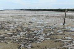Maritimt landskap på lågvattenvatten arkivbild