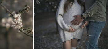 Marito attento che abbraccia tenero la sua moglie incinta e le sue mani sul suo atterraggio senza carrello in mandorla Fotografia Stock Libera da Diritti