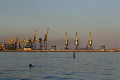 MARIUPOL, УКРАИНА - 5-ОЕ СЕНТЯБРЯ 2016: Силуэт много большого кранов в порте на золотом свете захода солнца стоковое фото