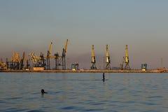 MARIUPOL, UKRAINE - 5. SEPTEMBER 2016: Schattenbild vieler großes Kräne im Hafen am goldenen Licht des Sonnenuntergangs stockfoto
