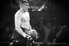 Mariusz Wach Heavyweight boxer Royalty Free Stock Photo