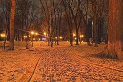 Mariyinsky park w wczesnym poranku Wijąca ścieżka prowadzi fontanna która dekorował z iluminować girlandami Kyiv Obraz Royalty Free