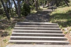 Marjan, colline sur la péninsule de la ville de la fente, Croatie photographie stock