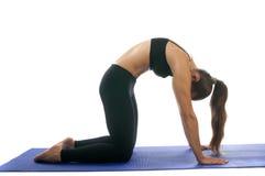 Marjaryasana pozy joga zdjęcia royalty free