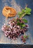 Marjoram Origanum vulgare herb blooming. Herbs Marjoram Origanum on vintage wooden background stock images