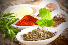 Marjoram, paprika, garlic salt Stock Images