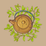 Marjoram tea in teapot Stock Images