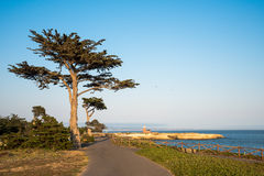 Mark Abbott Memorial Lighthouse in Santa Cruz California Stock Image