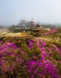 Mark Abbott Memorial Lighthouse in Santa Cruz California Royalty Free Stock Image