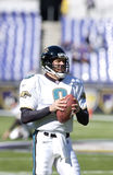 Mark Brunell, Jacksonville Jaguars Stock Photo