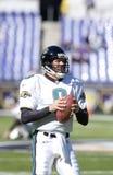 Mark Brunell, Jacksonville Jaguars. Jacksonville Jaguars QB Mark Brunell #8.  (Image taken from color slide Stock Photo