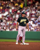 Mark Ellis, Oakland A's outfielder Stock Images