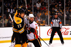 Mark Giordano -- Milan Lucic Stock Photography