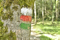 Mark of a long distance footpath and a local path Royalty Free Stock Image