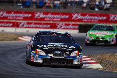 #6 Mark Martin, Pfizer Ford Taurus Immagine Stock