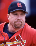 Mark Mc Gwire St. Louis Cardinals Stock Images
