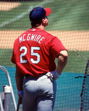 Mark Mc Gwire St. Louis Cardinals Royalty Free Stock Photos
