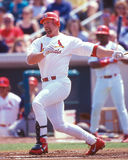 Mark Mc Gwire St. Louis Cardinals Royalty Free Stock Images