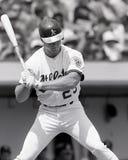 Mark McGwire, Oakland Athletics fotografia de stock royalty free