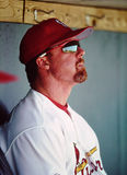 Mark McGwire St. Louis Cardinals Royalty Free Stock Photo