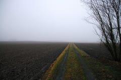 Mark path in winter fog Stock Image