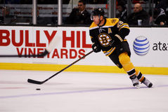 Mark Recchi Boston Bruins Royalty Free Stock Photos