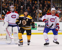 Mark Recchi, Boston Bruins en avant Image libre de droits