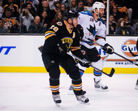 Mark Recchi, Boston Bruins vorwärts Stockbild