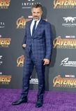 Mark Ruffalo. At the premiere of Disney and Marvel`s `Avengers: Infinity War` held at the El Capitan Theatre in Hollywood, USA on April 23, 2018 Royalty Free Stock Images
